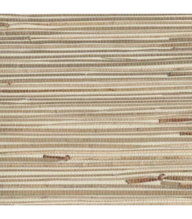 NZ0781 - Grasscloth by York - Sea Grass