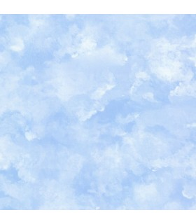 IT7388 - Young at Heart Wallpaper-Atrium Clouds