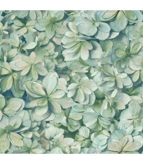 ON1619 - Outdoors In Wallpaper by York - Hydrangea Bloom