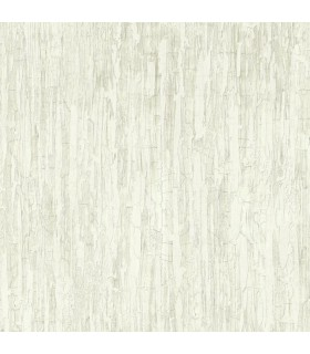 ON1636 - Outdoors In Wallpaper by York - Weathered Paint