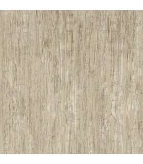 ON1639 - Outdoors In Wallpaper by York - Weathered Paint