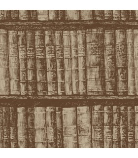 HO3315 - Tailored Wallpaper by York - Library Boookshelf