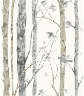 RMK9047WP - Peel and Stick Wallpaper-Birch Trees