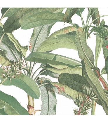 MH36534 - Manor House Wallpaper by Norwall-Tropical Banana Plant