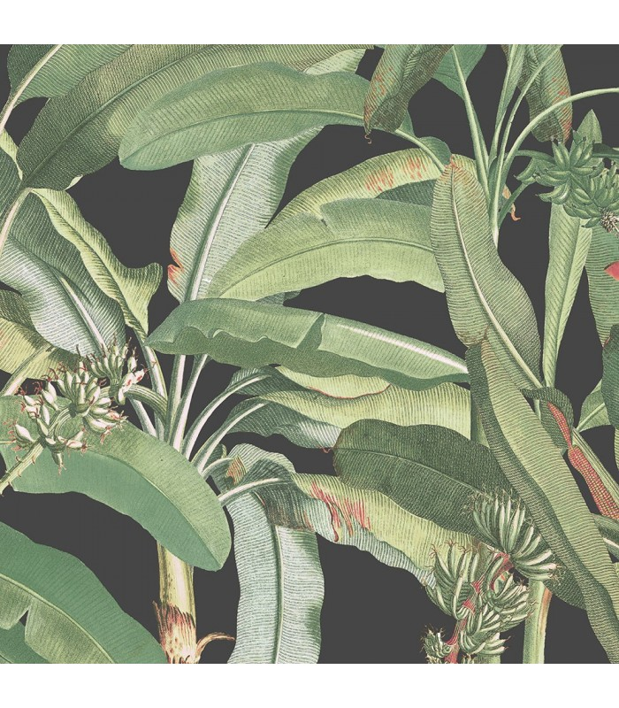 MH36535 - Manor House Wallpaper by Norwall-Tropical Banana Plant
