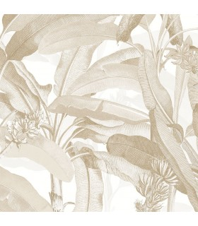 MH36536 - Manor House Wallpaper by Norwall-Tropical Banana Plant