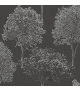 FD23279 - Brewster Essentials Wallpaper-Tree Tops Black Photographic