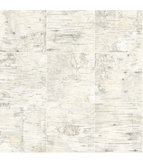 3118-12642 - Birch and Sparrow Wallpaper by Chesapeake-Champlain Wood Grid