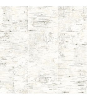 3118-12643 - Birch and Sparrow Wallpaper by Chesapeake-Champlain Wood Grid