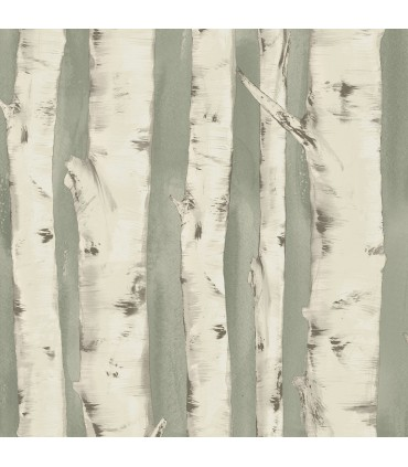 3118-12603 - Birch and Sparrow Wallpaper by Chesapeake-Pioneer Birch Tree