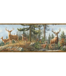 3118-48463B - Birch and Sparrow Wallpaper by Chesapeake-Whitetail Crest Forest Border