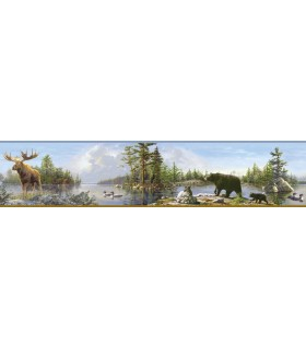 3118-48541B - Birch and Sparrow Wallpaper by Chesapeake-Moose Lake Forest Border