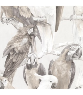 2836-803105 - Advantage Shades of Grey Wallpaper-Viola Macaw Parrot