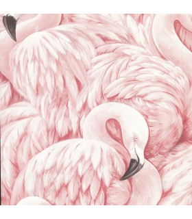 2814-803204 - Bath by Advantage Wallpaper-Horace Pink Flamingos