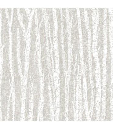 2813-24579 - Kitchen by Advantage Wallpaper-Flay Birch Tree