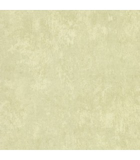 2835-D141004- Advantage Deluxe Wallpaper-Mansour Plaster Texture
