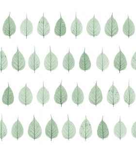 DD128847 -Origin Luxury Wallpaper by Estahome-Greenhouse Leaves