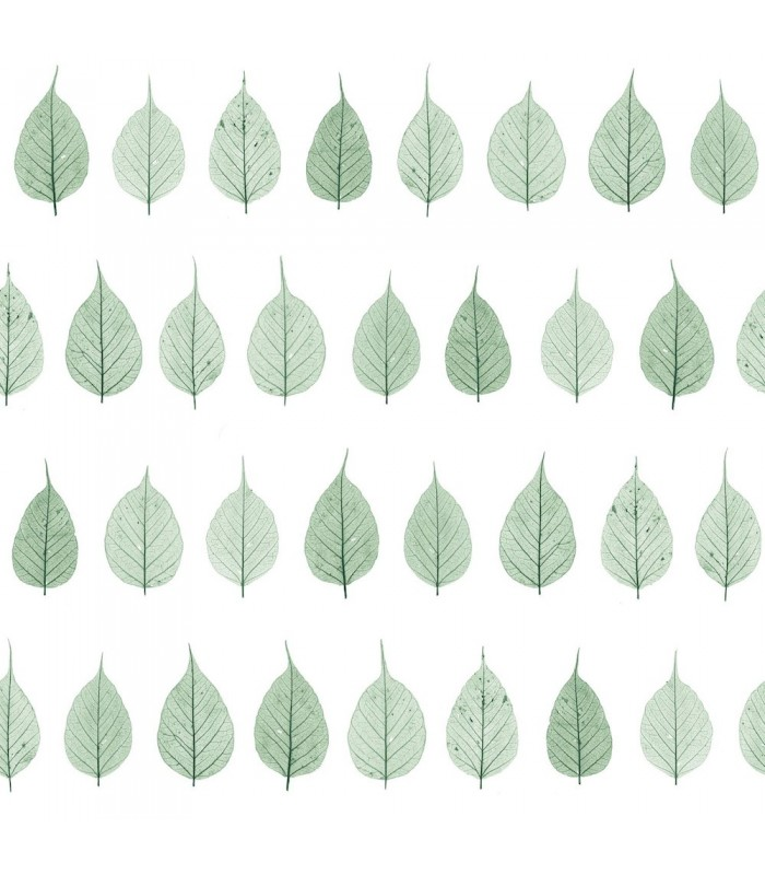 DD128847 -Origin Luxury Wallpaper by Estahome-Greenhouse Leaves