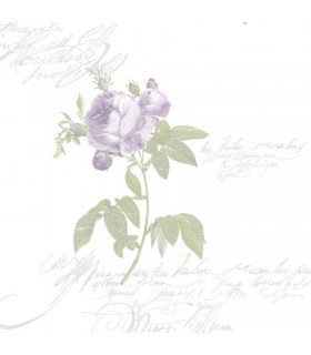 CG28859 - Purple Vintage Cut Rose Norwall Special