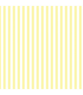 CM28659 -Cheeky Monkey Yellow Stripe Norwall Special