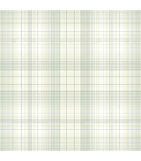 AF37717 - Flourish Wallpaper by Norwall-Plaid