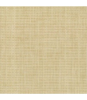 VG4425 - Grasscloth 2 by York