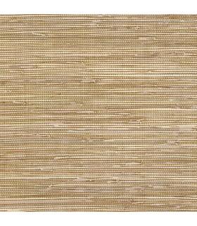 BG21536 - Texture Style 2